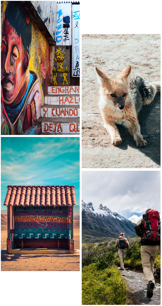 Various pictures of Chile