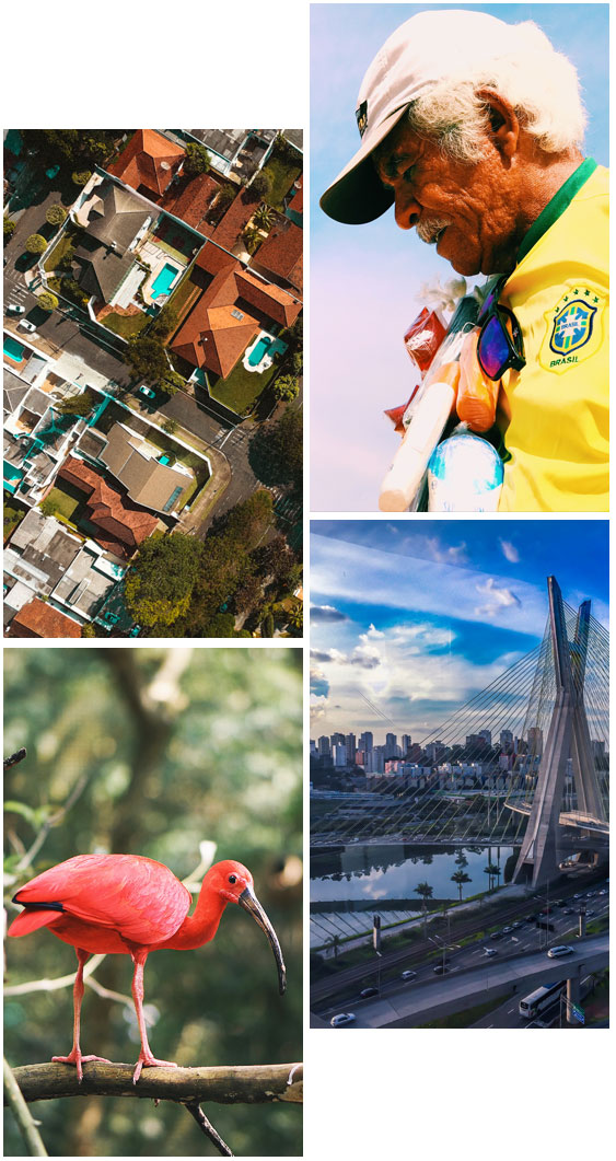 Various pictures of Brazil