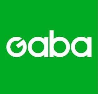 1-to-1 English Instructor with Gaba in Japan